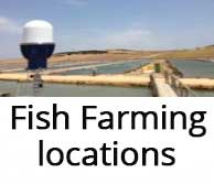 fish-farming-location-security