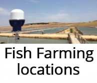 fish-farming-location-security